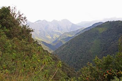 Mountain View - Yanacocha Reserve