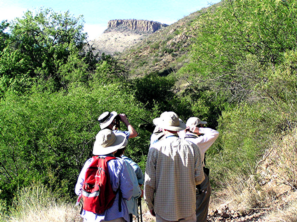 On the trail in French Joe Canyon