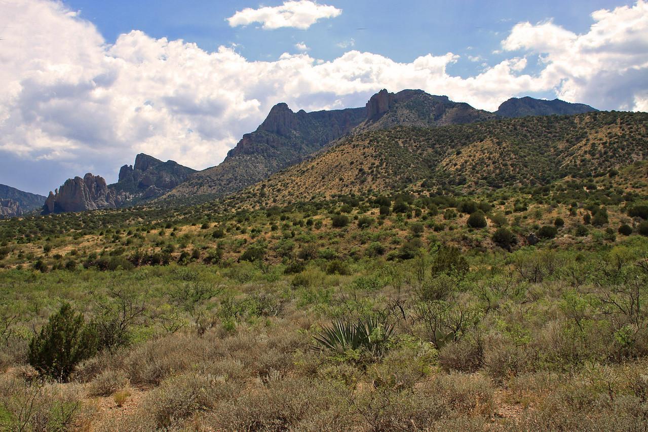 Chiricahua Mountains