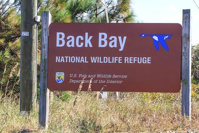 Back Bay NWR, Virginia Beach, VA