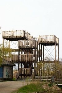 A view of the observation tower at the Marsh Boardwalk