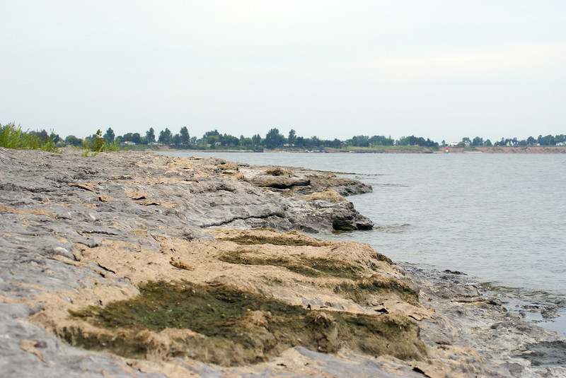 Lake Erie shoreline from Rock Point Provincial Park