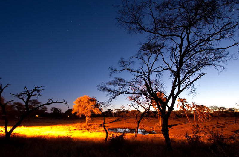 tented camp waterhole at night