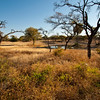 tented camp waterhole