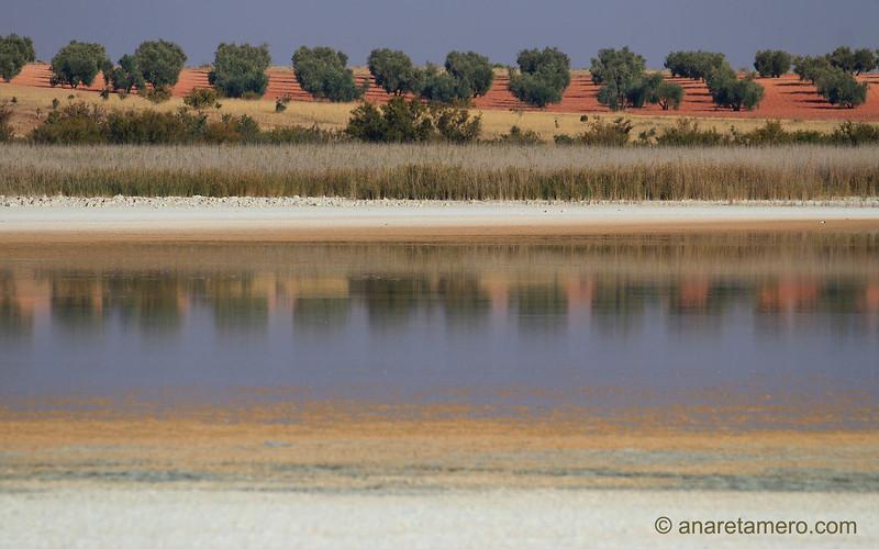 Laguna manchega