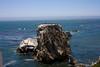 Brown Pelicans, Shell Beach, CA