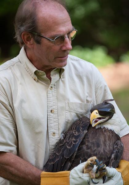 Birds of Prey: Eagle Release