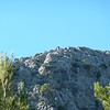 habitat - masanella - mallorca - 24 oct 09_4102142035_o