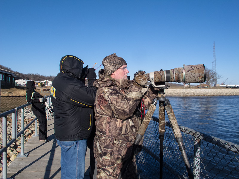 Bald Eagle Photographers<br /> Bald eagle watching Lock and Dam 14 Mississippi River, Iowa