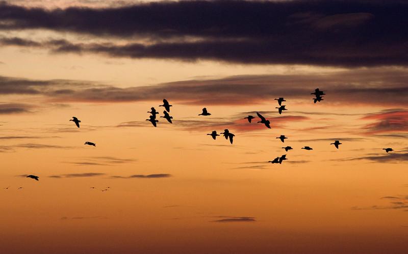 Sunset over Schouwen-Duiveland