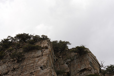 Bishop Ca. Dark Skies and Mountains