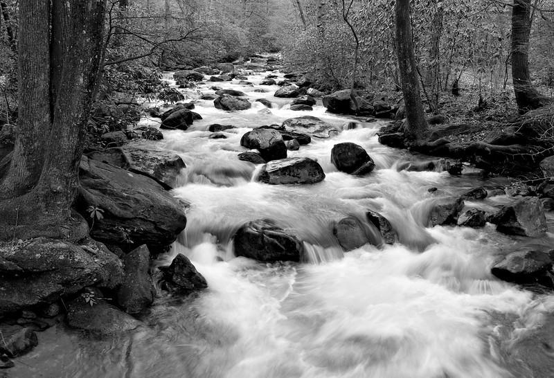 The Middle Saluda River at Jones Gap State Park, near Greenville, SC.