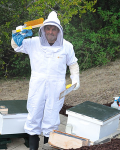 Bees_Pkg_Install_04302010-019