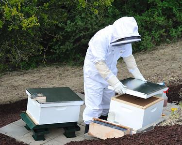 Bees_Pkg_Install_04302010-018