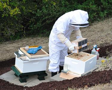 Bees_Pkg_Install_04302010-016