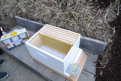 Bees_Pkg_Install_04302010-002