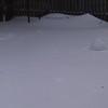 buried birdbath