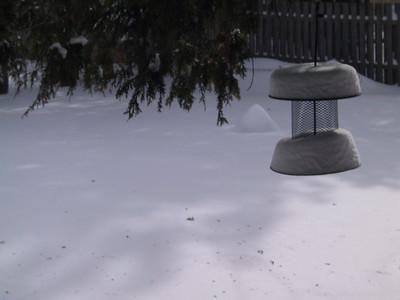 blizzard '07