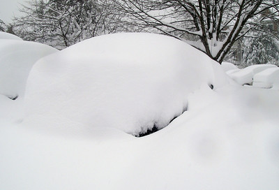 my Ford Escape