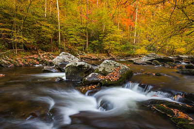 Smoky Mountains Stream in Early Autumn