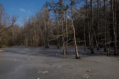 blue creek ice