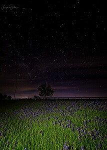 Made from 12 light frames by Starry Landscape Stacker 1.8.0.  Algorithm: Mean Min Hor Star Dupe