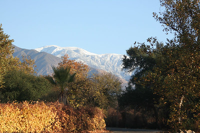 The day begins with a view of fresh snow atop Mt. Baldy as seen from the parking lot of the Rancho Santa Ana Botanic Garden in Claremont.