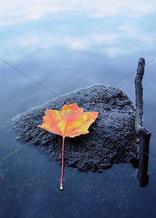 """Zen"" - a peaceful autumn moment from Maine."