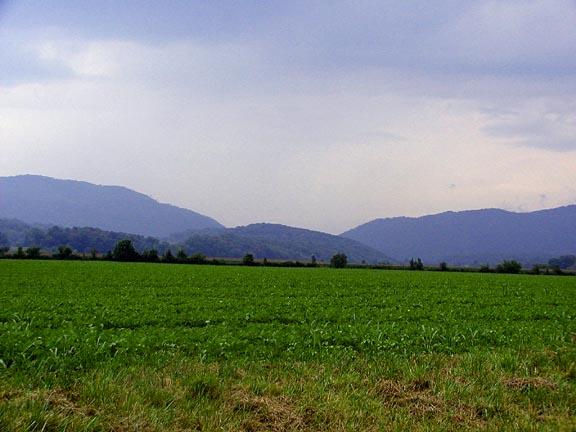Looking out across the Ellejoy plain toward Walland Gap.<br /> Blount County, TN 7/23/07