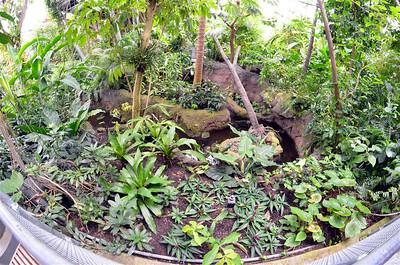 Cleveland Botanical Garden Aug 2011