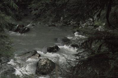 _MG_8131-01