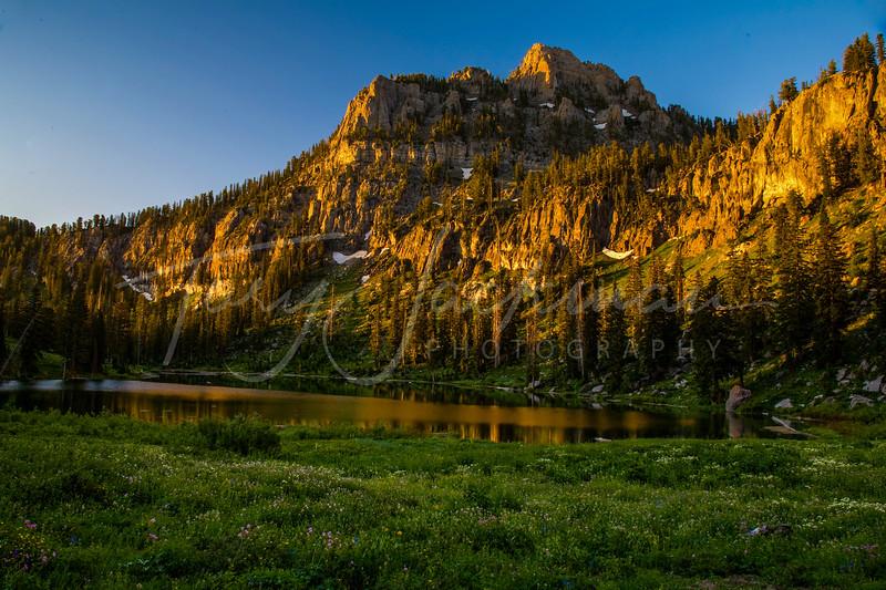 White pine lake (1 of 1)