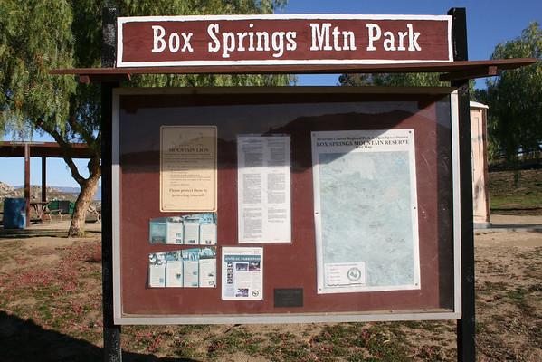 Box Springs Best