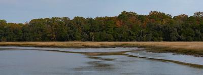 Low tide on the Pocotaligo River.