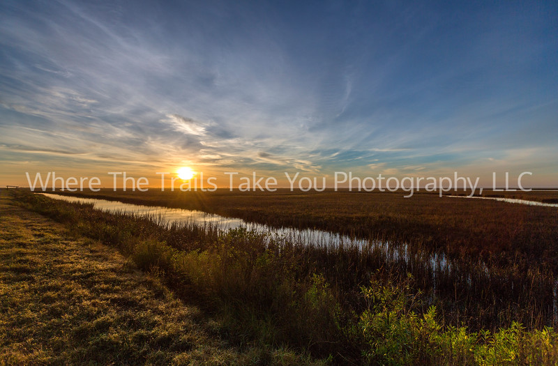 209  Sunrise Over The Wetlands