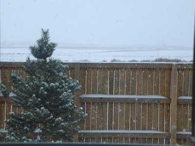 First Winter in new home - Dec 2008; view from front porch - facing Buffalo Run Golf Course and Pikes Peak