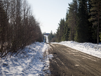 Main road to the lodge