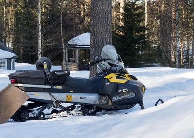 The Ski-doo