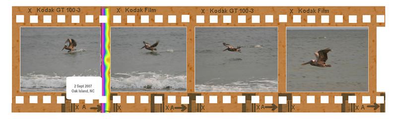 00aFavorite 20070902 IMG_8425, 8426, 8427, 8428 [4-frame filmstrip]
