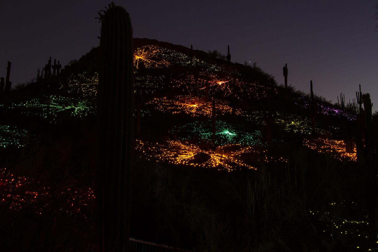 IMAGE: https://photos.smugmug.com/Nature/Bruce-Munro-Sonoran-Light-2016/i-xZqf4H9/0/X2/IMG_9294-X2.jpg