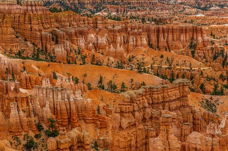 Bryce Canyon 6-30-19_V9A7027