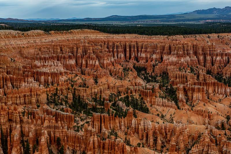Bryce Canyon 6-30-19_V9A7050