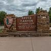 Bryce Canyon 6-30-19_V9A7059