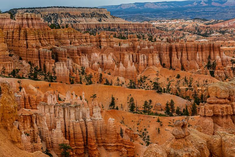 Bryce Canyon 6-30-19_V9A7036