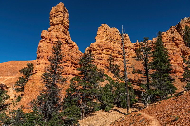 Red Mountain 6-30-19_V9A7072