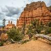 Hoodoos in Red Rock