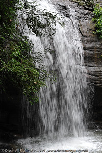 Serenity Falls - Buderim Forest Park, Monday 8 March 2010 - handheld photos.
