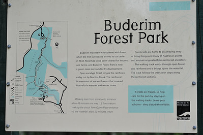 Information Sign - Buderim Forest Park, Monday 8 March 2010 - handheld photos.