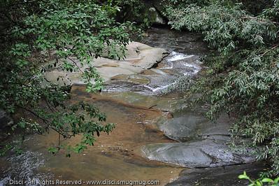 Martins Creek - Buderim Forest Park, Monday 8 March 2010 - handheld photos.