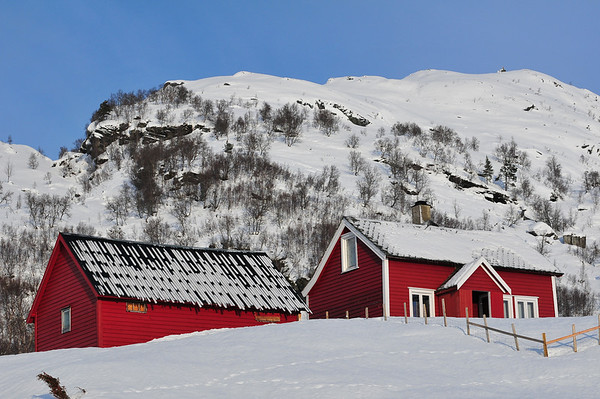 Støl på Nore Hamlagrø 25.01.2011 -8gr.